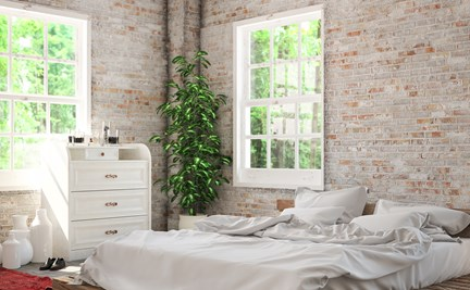5 Plants That Can Help You to Sleep Better At Night